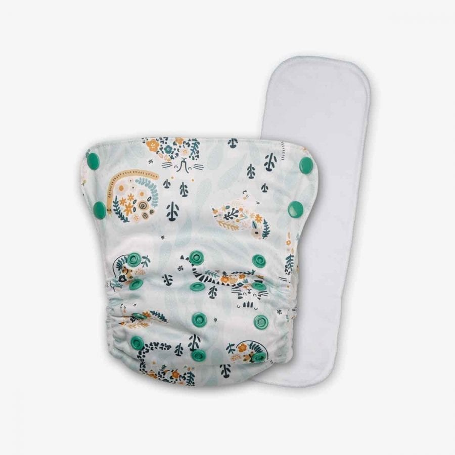 Pocket Cloth Diapers with Inserts - Jazzy Sassy